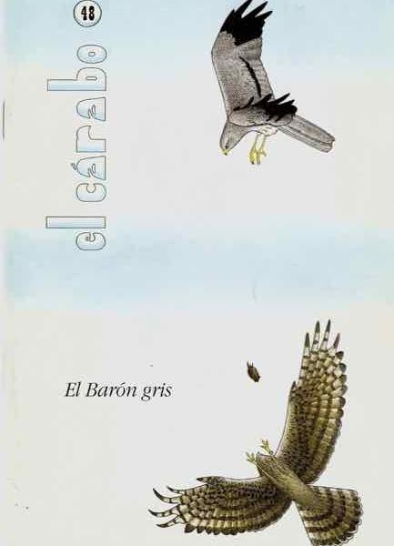El aguilucho cenizo, ave de presa esteparia, anida en el suelo de los trigales
